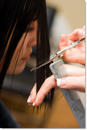 on Cheap Professional Haircuts In Sunnyvale Ca Low Cost Hair Cuts In